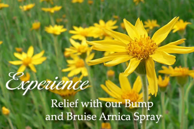 Bump and Bruise Arnica Spray