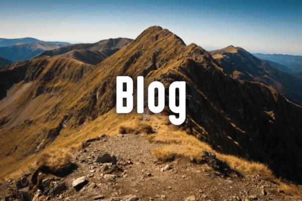 T's Tonics Blog